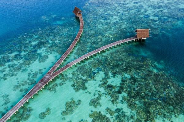 3 Wisata Hijau Yang Indah di Indonesia